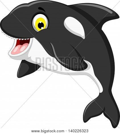 funny killer whale cartoon swimming for you design