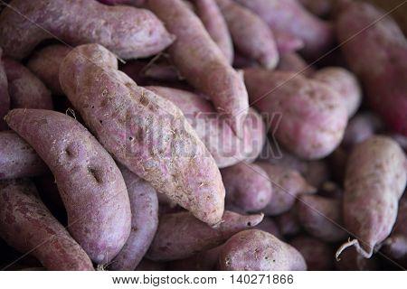 Sweet Japanese Purple Potato