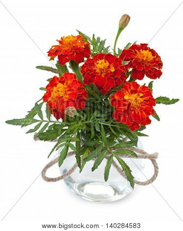Beautiful Flowers Marigolds In A Glass Jar With Ropes Bowknot, Isolated On White Background.