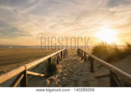 A path on sand at sunset going to the sea. The wather is beautiful with an awesome sunset with golden light and little clouds in the sky.
