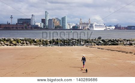 NEW BRIGHTON, ENGLAND, JUNE 29. Magazines Promenade on June 29, 2016, in New Brighton, England. A Woman Walks Her Dogs on the Beach in New Brighton England