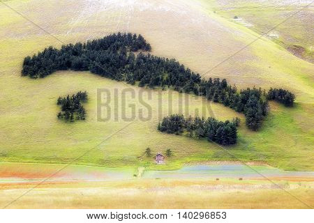 Italy's geographical representation with the classic form to boot made of pine trees arranged on the side of a hill near Castelluccio di Norcia Italy.
