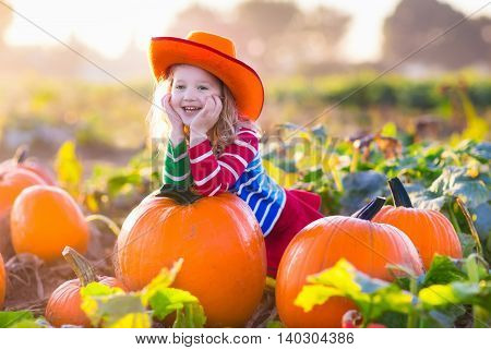 Little girl picking pumpkins on Halloween pumpkin patch. Child playing in field of squash. Kids pick ripe vegetables on a farm in Thanksgiving holiday season. Family with children having fun in autumn poster
