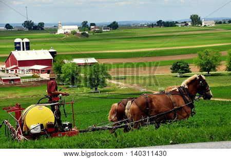 Ronks Pennsylvania - June 6 2015: Amish farmer with two horses working a field on his farm in Lancaster County