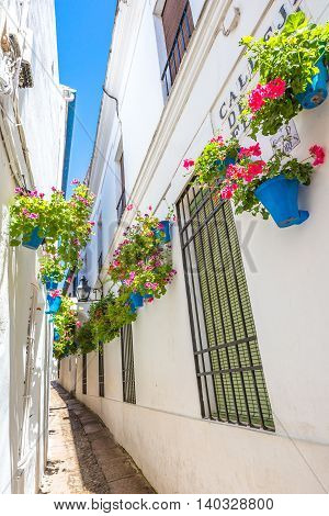 Calleja de las Flores in Barrio de la Juderia, one of the most popular and tourist streets of Cordoba, Andalusia, Spain.