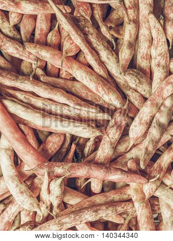 Cranberry Beans Vintage Desaturated