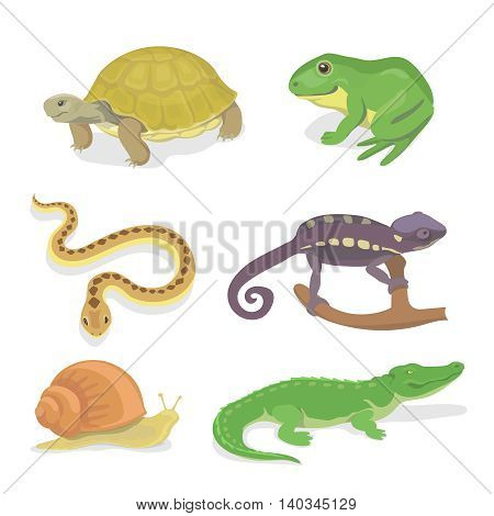 Reptiles and amphibians decorative set of crocodile turtle snake chameleon icons in cartoon style isolated illustration