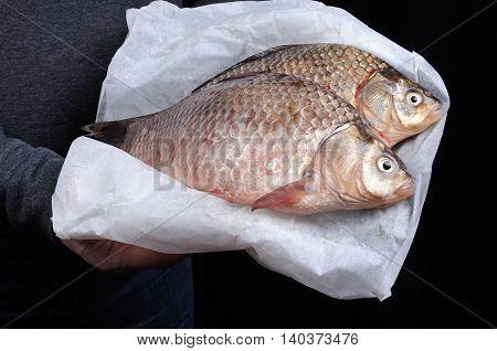 Man holding fresh crucian carp stacked on paper