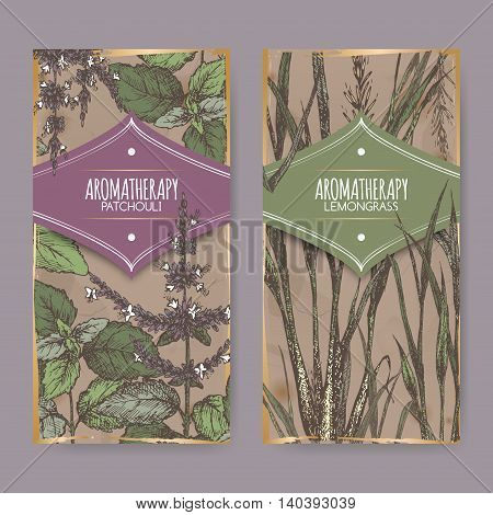 Set of two color labels with lemongrass and patchouli on vintage background. Aromatherapy series. Great for traditional medicine, perfume design, cooking or gardening labels.