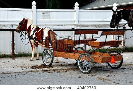 Lancaster County Pennsylvania - October 14 2015: Horses hitched to wooden Amish wagons parked at a local store
