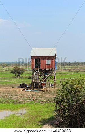 one house on piles in cambodia landscape
