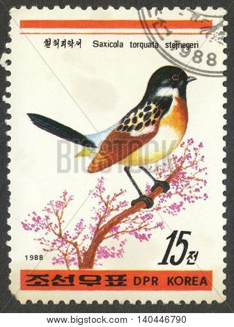 MOSCOW RUSSIA - CIRCA APRIL 2016: a post stamp printed in the NORTH KOREA shows a bird Saxicola torquata stejnegeri the series