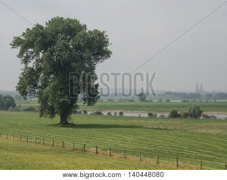 the river rhine in Germany near rees