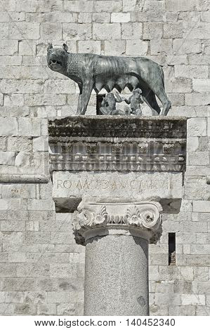 Column with capitoline Wolf statue legend of Rome