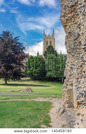 The Abbey Gardens in Bury St Edmunds, Suffolk.