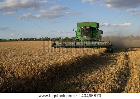 Harvester gathers the wheat crop in a field poster
