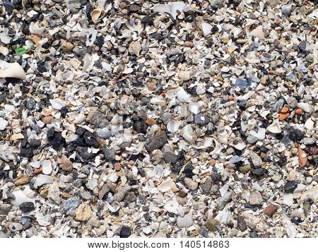 The surface of the sea coast from the wreckage of shells and small pebbles on the beach close up