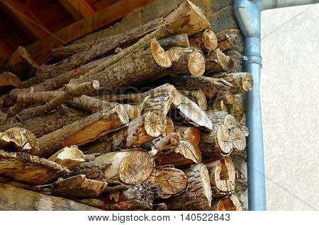 A pile of wood in the cabin storage of peasant agriculture