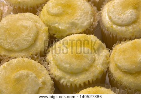 This is a photograph of Lemon flavored cupcakes