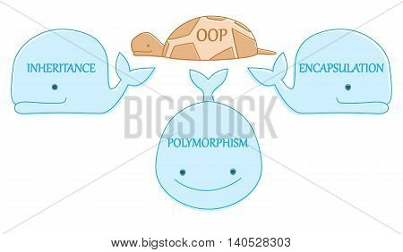 Oop Turtle On Whales