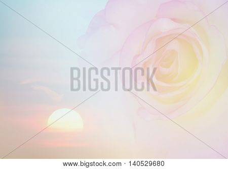 Invitation card with blurred rose Pastel colors. Wedding card template. Floral background. Elegance pattern with flowers.