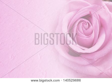 Invitation card with blurred pink rose. Wedding card template. Floral background. Elegance pattern with flowers.