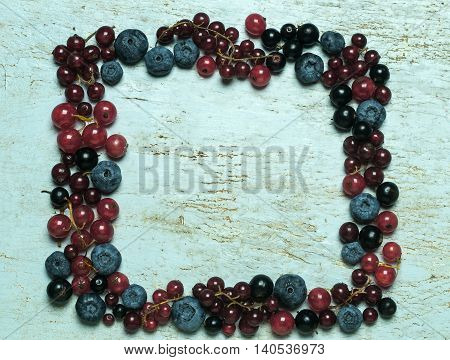 Frame of fresh berries ( red and black currants,bog whortleberry ) with green leaves