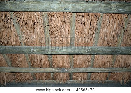 Thatched roof made from palmetto fronds and branches of trees