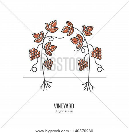 Growing grapes. Single logo in modern flat and thin line style isolated on white background. Outline winery symbol. Simple mono linear pictogram. Stroke vector logotype template.