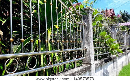 ornate scrolled metal fence combined with a concrete block wall, palm fronds and leaves jutting through the fence railing, house roof tiles barely seen, Songkhla, Thailand