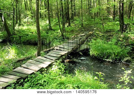 Rickety footbridge over a small fast moving stream on a sunny spring day.