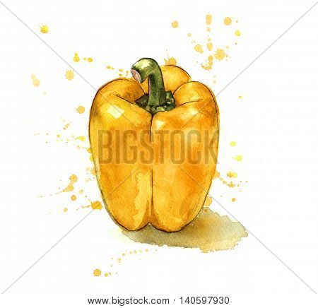 Yellow pepper painted in a splashy watercolour style.
