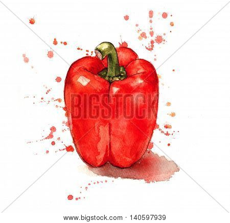 Red pepper painted in a splashy watercolour style