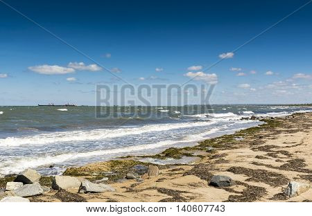 The coast of the Black sea with cargo ships on the horizon. Stock photo