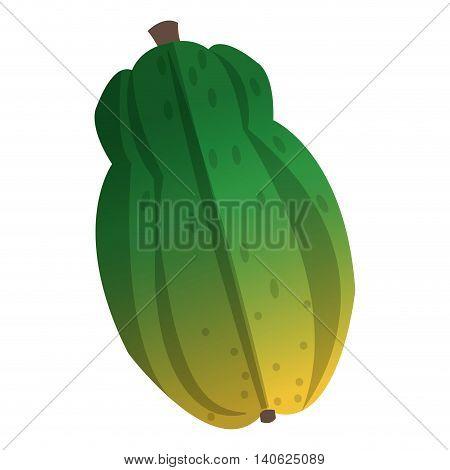flat design whole papaya icon vector illustration