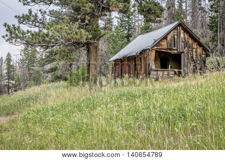 ruins of a vintage cabin along Old Flowers Road in Roosevelt National Forest, a popular jeep trail near Fort Collins, Colorado