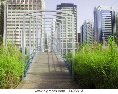 Green Way Through Building