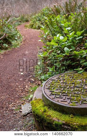 Sewer manhole entry next to walking trail in the woods