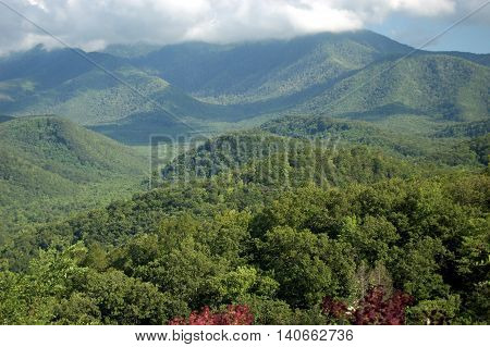 Smoky Mountains panorama. Great Smoky Mountains National Park, Tennessee