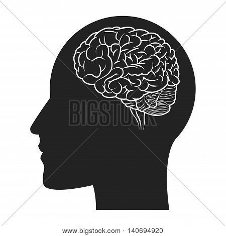 flat design human brain within head silhouette icon vector illustration