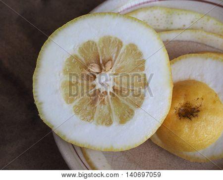 Citron Citrus Fruit