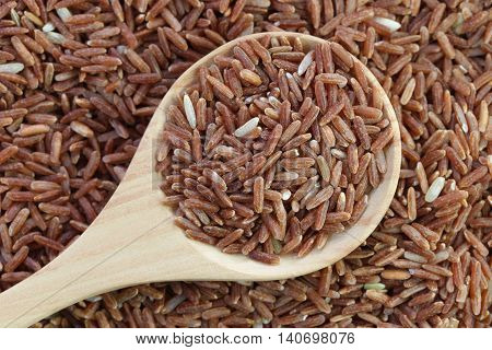 Organic brown rice in wooden spoon on pile grain rice for nature food background.