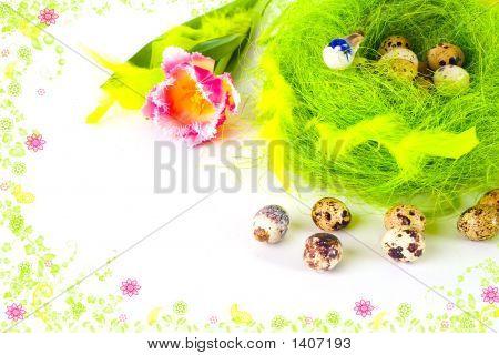 Framed Card Of Easter Eggs In The Nest