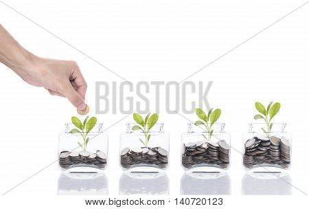 Hand saving money conceptbusiness hand putting money coin stack growing tree on piggy bank isolated on white background.