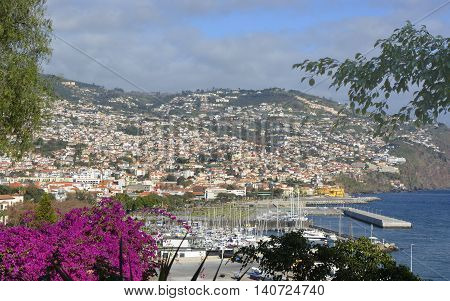 View over seafront marina and harbour from Saint Catherine's Park. Funchal Madeira Portugal