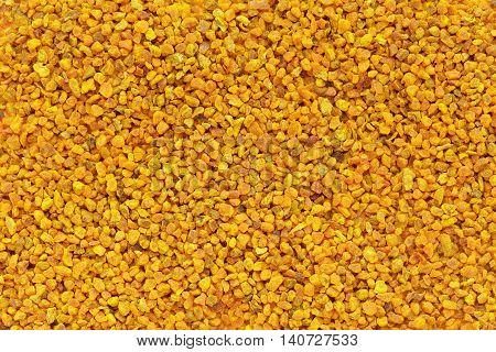 Organic Turmeric or Haldi (Curcuma longa) in tea cut size. Macro close up background texture. Top view.