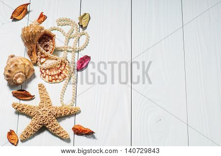 Decor of seashells and sea star close-up on blue wooden table. Sea objects - shells sea star pearls.