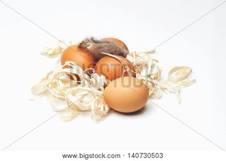 Brown Domestic Eggs With Excelsior