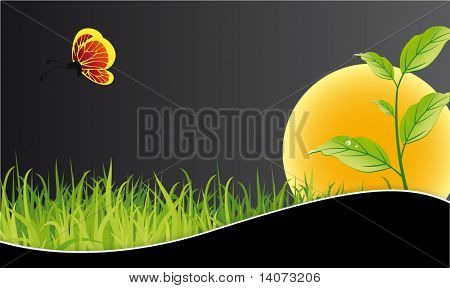 nature summer background