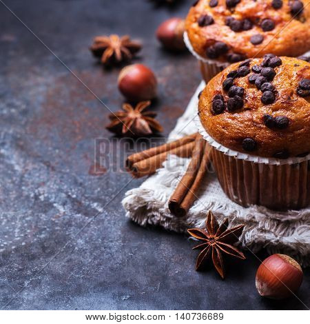 Food and drink, seasonal concept. Homemade chocolate chip muffins with spices for breakfast on a grunge rusty pan. Selective focus